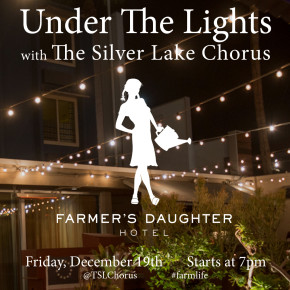 Next Show: Under the Lights at Farmer's Daughter